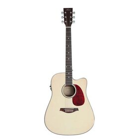 D50 Dreadnought Size Acoustic Guitar with built-in tuner