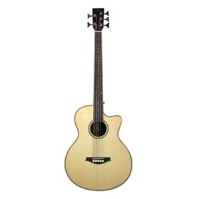 Artist ABJ505CEQ 5 String Acoustic Bass with Cutaway & EQ - Gloss