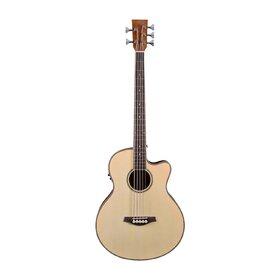 bass guitars australia 39 s best value bass guitars artist guitars. Black Bedroom Furniture Sets. Home Design Ideas