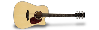 Artist Guitars Acoustic Guitar