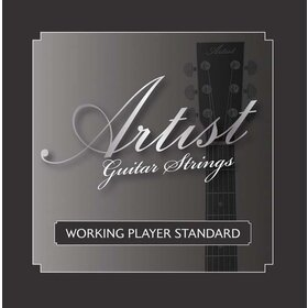 Artist ACST1253 Acoustic Guitar Steel Strings Gauge 12-53