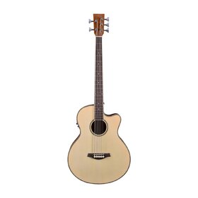 Artist ABJ605CEQ 5-String Acoustic Electric Bass with Cutaway and EQ
