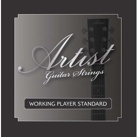 Artist ACST1047 Acoustic Guitar Steel Strings Gauge 10-47