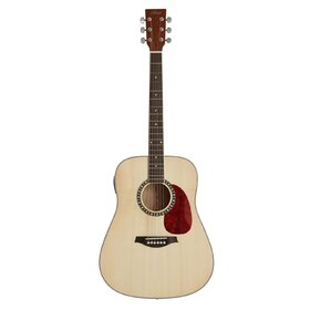 Artist DS120 Acoustic Guitar, Solid Top Dreadnought
