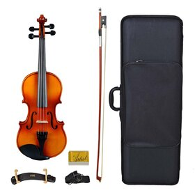 Artist SVN Solid Wood Student Violin Package
